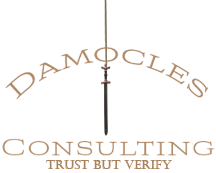 Damocles Consulting